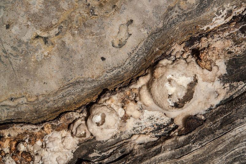 A Caverna da Torrinha e a flor de aragonita